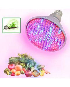 LED växtlampa med sockel